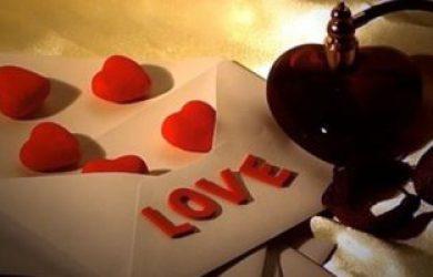 وفاء شبارة تكتب: عيد الحب بين مؤيد ورافض