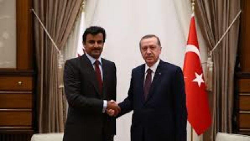 تميم وأردوغان يبحثان التعاون الاستراتيجي ويدعوان لحل خلافات المنطقة بالحوار