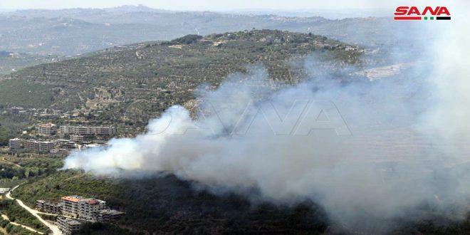 إخماد حريق في قرية زاما بريف اللاذقية وحريقين في مشتى الحلو بريف طرطوس.موقع أصدقاء سورية.
