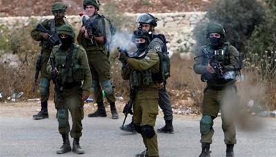 لبنان يتهم الجيش الإسرائيلي بسرقة قطيع ماعز - موقع أصدقاء سورية